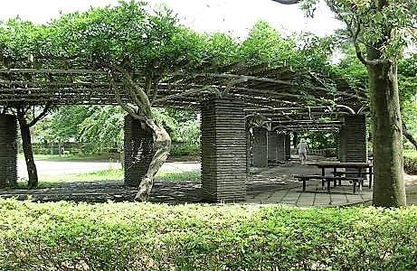 上尾丸山公園(近隣人気スポット)